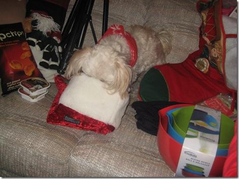 christmas2011 1 042