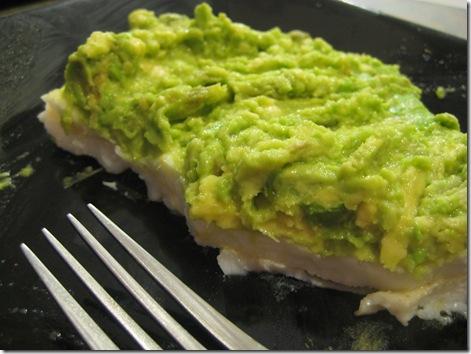 avocado 003