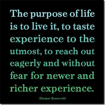 life-purpose-poster-web